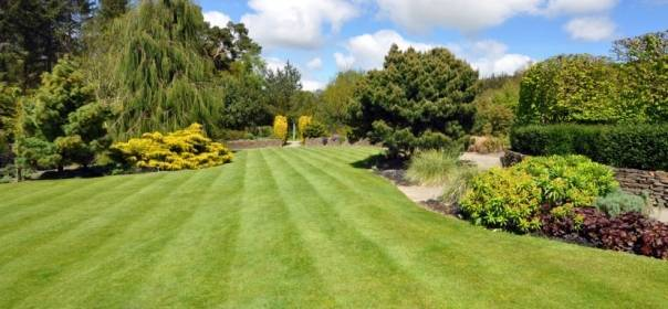 Giardino D Inverno Quanto Costa : Ristrutturazione giardino quanto costa edilnet