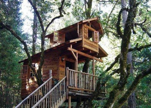 Casa sull 39 albero quale il costo - Casa sull albero progetto ...